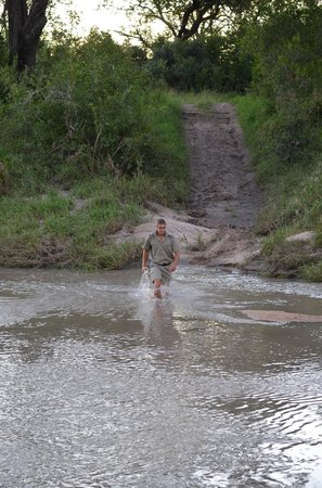 Elephant Plains Game Lodge:                                     Villie checking the depth of the crossing b4 we got stuck th
