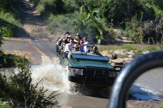 Elephant Plains Game Lodge:                                     Fun river crossing!