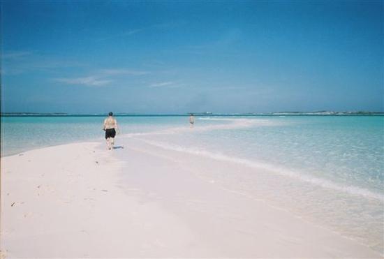Island World Adventures:                   sand bar in the Exumas