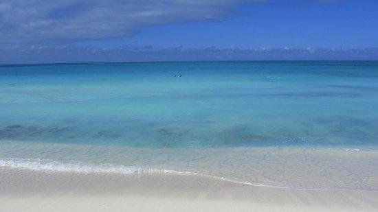 Hostal Buen Viaje:                                     playa perla blanca