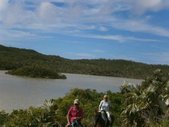 Oceanview Farm: Lake trail
