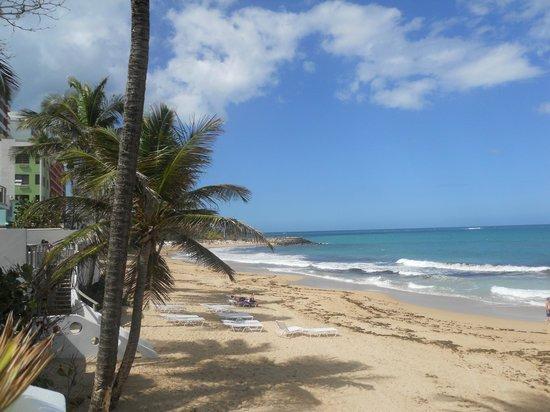 Atlantic Beach Hotel: View from hotel bar