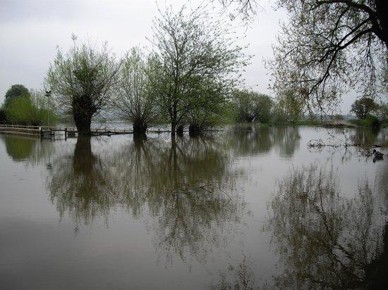 The Fleet at Twyning:                   River Avon in flood at Twyning next to The Fleet pub