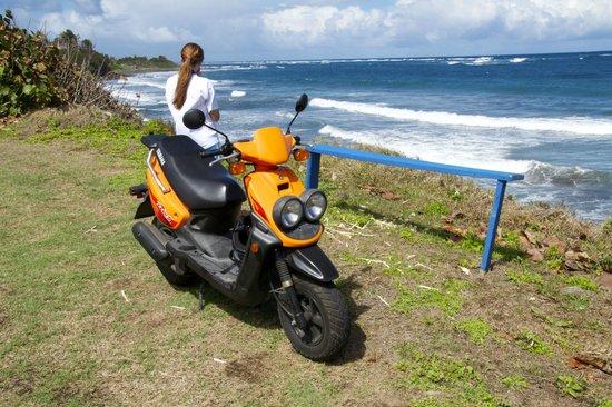 Ride St.Kitts :                                                       Atlantic Ocean side of St. Kitts