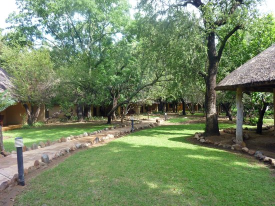 Shiduli Private Game Lodge:                   shiduli lodge grounds