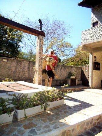 Hostal Casa de Las Gargolas:                   Awesome theme with the Gargoyles