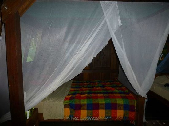 Red Frog Bungalows:                   Comfy bed with great mosquito nets