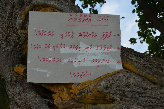 Palm Villa:                   Viktig information !