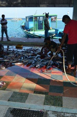 Palm Villa:                   Fiske marknaden på Velidhoo.