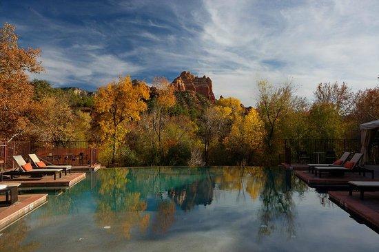 Amara Resort & Spa, a Kimpton Hotel: Infinity-edge Pool