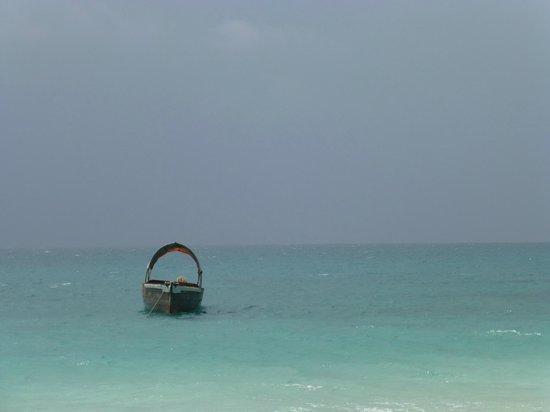 Dongwe Club:                   spiaggia