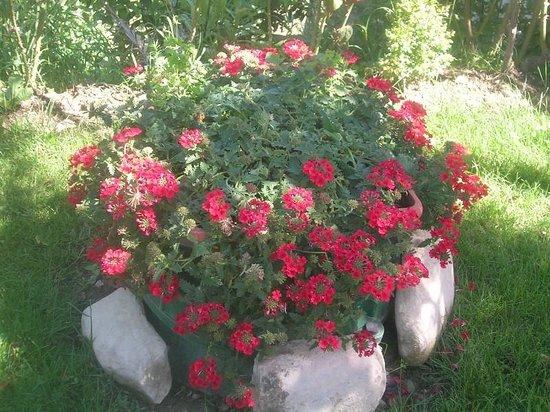 La Terrazza del Subasio: Il giardino