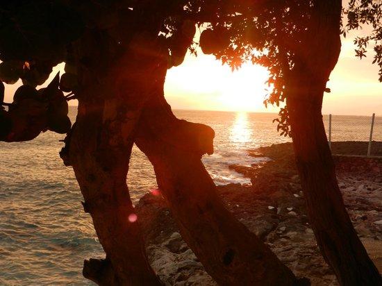 Westender Inn:                                     Jamaican sunset...Westender style