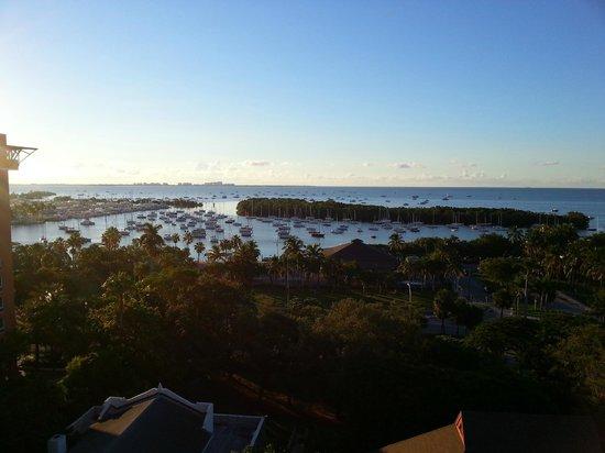 Sonesta Coconut Grove Miami:                   Baía de Coconut Grove.
