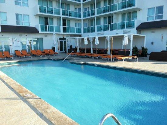 Sonesta Coconut Grove Miami:                   Piscina no 8 andar