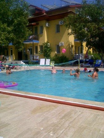 Happy Nur Hotel:                   the hotel pool and sunbed area