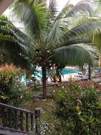 Marina Villa:                   utsikt från rummet