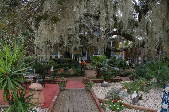 Tybee Island Inn: Lots of spanish moss draping our 200 year old Live Oak Trees