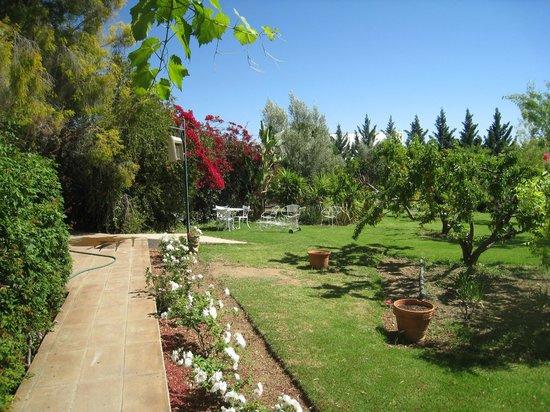 Karoo Lodge : Back Garden