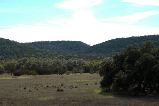 Hill Country Equestrian Lodge:                   View from porch