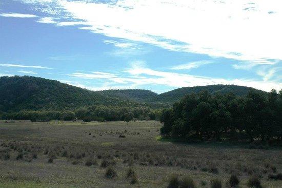 Hill Country Equestrian Lodge照片
