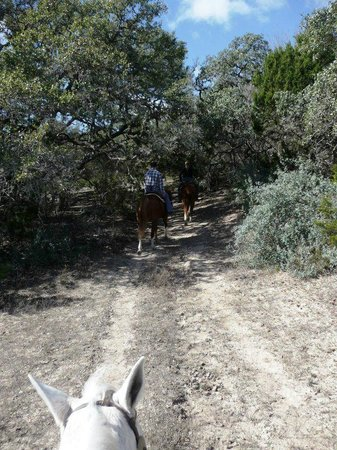 Hill Country Equestrian Lodge:                   trail ride