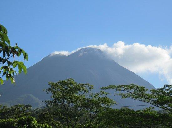 فولكانو لودج آند سبرينجس:                   The volcano                 