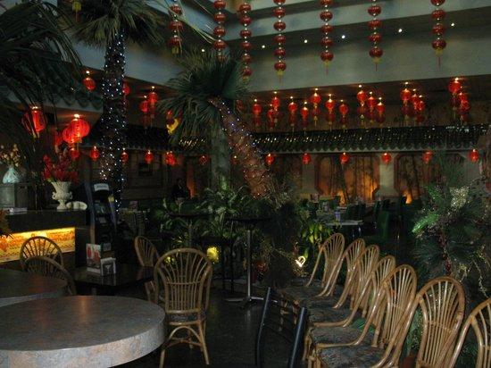 Program asian restaurants in brampton zoophile