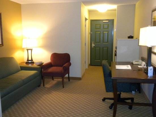 Country Inn & Suites By Carlson, Washington Dulles International Airport: Living area of Room 315