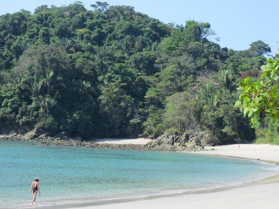Hotel San Bada:                   Manuel Antonio beach inside the national park