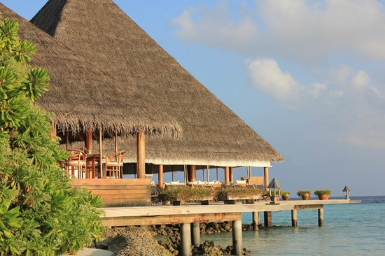 Gangehi Island Resort:                   Restaurant