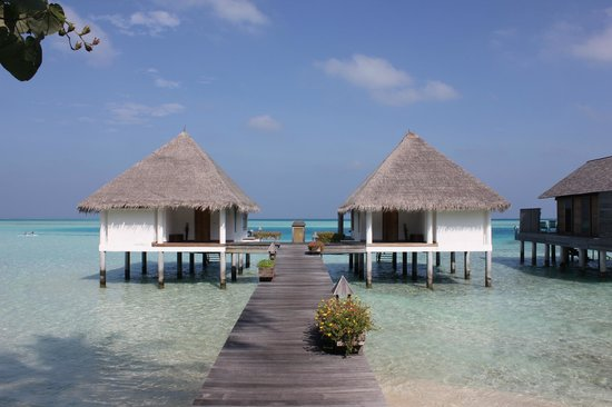 Gangehi Island Resort:                   Water Villa