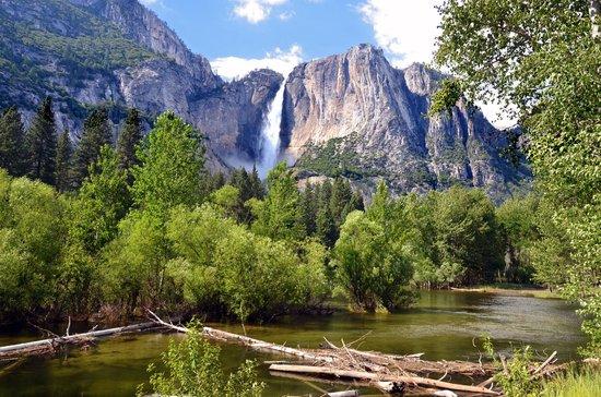 Yosemite Falls:                   Yosemite Valley