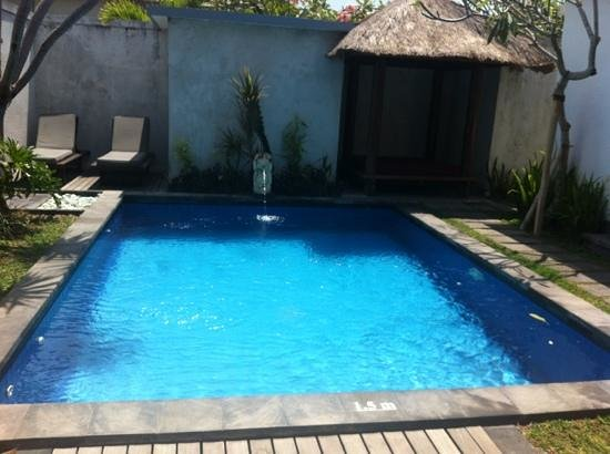 Grand La Villais Villa and Spa Seminyak:                   the pool