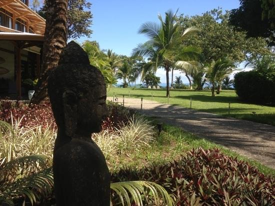 Blue Osa Yoga Retreat and Spa:                                     Buddha
