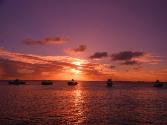 Divi Flamingo Beach Resort and Casino:                   Room 105 patio view at sunset.