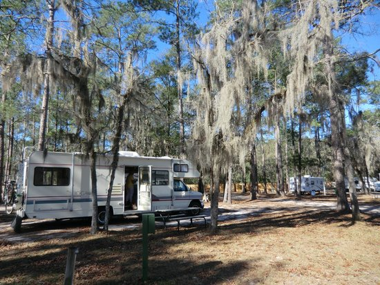 Suwannee Valley Campground:                                     Ruime plekken