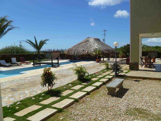 Posada Paraiso: View at Pool and Palm House