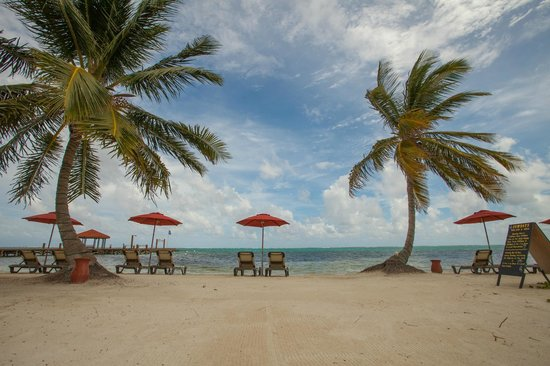 Grand Caribe Belize Resort and Condominiums: Grand Caribe Belize Resort - Ocean Views