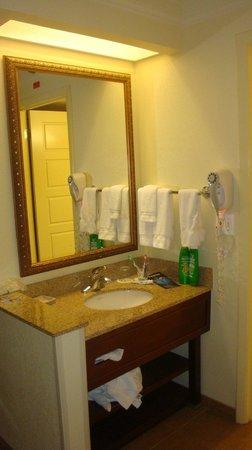 Rosen Plaza Hotel: Ante baño