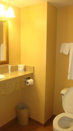 Rosen Plaza Hotel: Baño