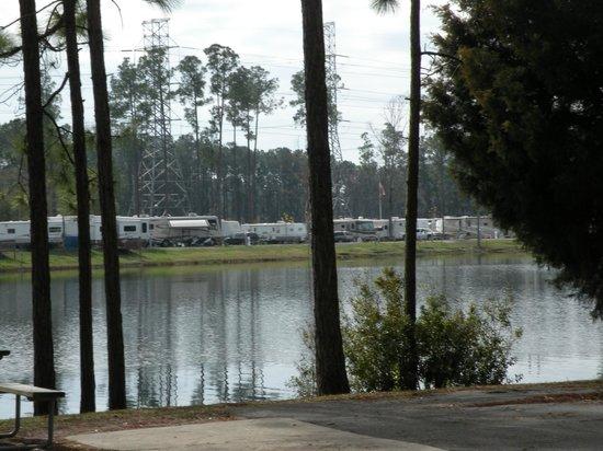 Flamingo Lake RV Resort:                   Far side of the lake