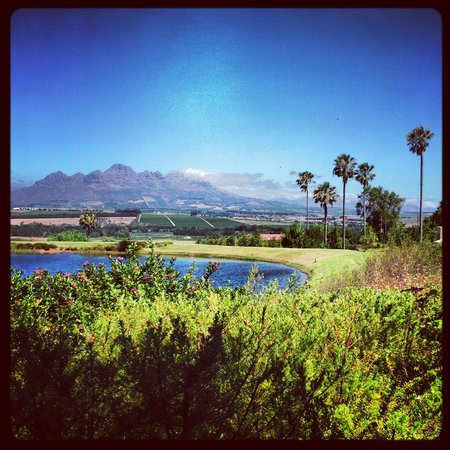 Asara Wine Estate & Hotel:                   View from Restaurants