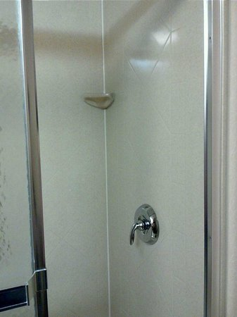 Hampton Inn Syracuse Clay:                   Shower (plastic that is molded like stone tile)
