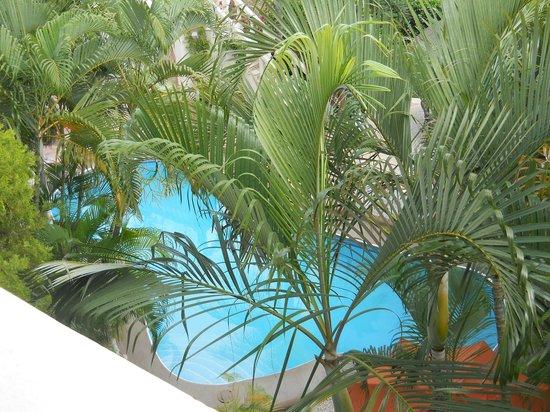 Aventura Mexicana:                   one of 2 small pools form my 3rd floor balcony