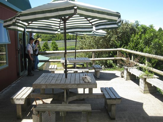 Blueberry Cafe:                   outside deck