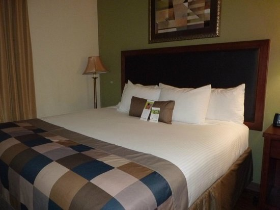 Wingate by Wyndham Tuscaloosa: Bed