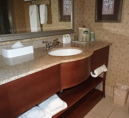 Wingate by Wyndham Tuscaloosa: Bathroom