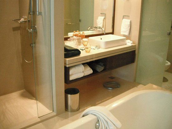 Pullman Bangkok Grande Sukhumvit:                   Shower & Sink