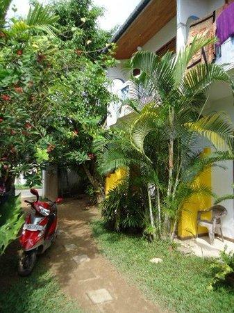 Calidan Guest House:                   The small garden area